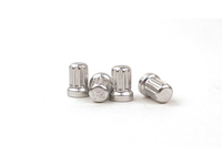 IPD Exclusive: 121248 Billet Valve Stem Cap Kit - Silver With R Logo (SALE PRICED)