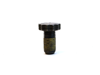 121824 Flex Plate Bolt (SALE PRICED)