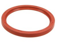 101485 Rear Crankshaft Seal