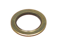 111099 Fuel Filter Seal Ring (SALE PRICED)