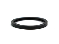 124913 Thermostat Seal