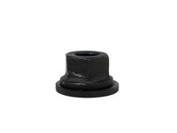 Strut Top Lock Nut - P80 P2