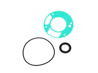 125702 Oil Pump and Seal Kit