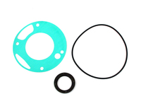 125713 Oil Pump and Seal Kit