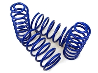 112327 Sport Lowering Springs - 240 Wagon
