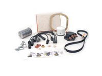 103985 Extended Tune Up Kit