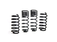 112671 Sport Lowering Springs - C30 (SALE PRICED) (CLOSEOUT)